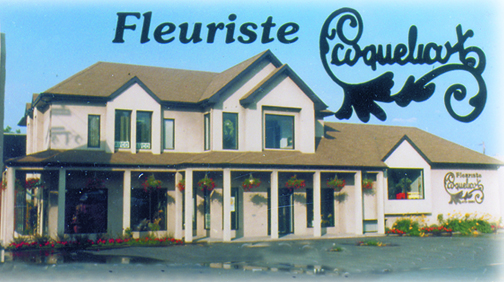 Fleuriste coquelicot fleuriste coquelicot st eustache qc for Fleuriste proche